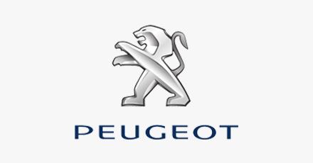Rodas para Peugeot